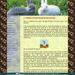 Choix des lapins de chair ou de compagnie