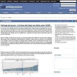 Chômage des jeunes : La France doit tripler ses efforts selon l'OCDE