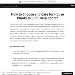 How to Choose and Care for House Plants to Suit Every Room? – Flat & Apartment Interior Design