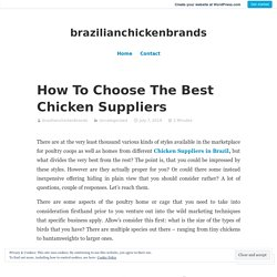 How To Choose The Best Chicken Suppliers