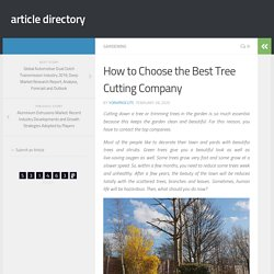 How to Choose the Best Tree Cutting Company