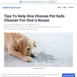 Tips To Help One Choose Pet Safe Cleaner For One's House – soapfreeprocyon