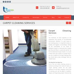 Choose Carpet Cleaning Services In Canada