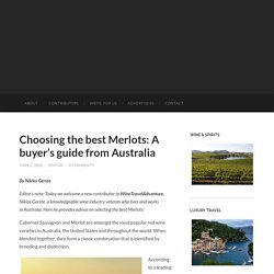 Tips to Select the Best Merlots Wine