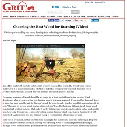 Choosing the Best Wood for Burning (Video) – DIY – GRIT Magazine