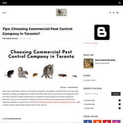 Tips: Choosing Commercial Pest Control Company in Toronto?