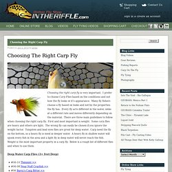 Choosing the Right Carp Fly