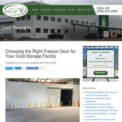 Choosing the Right Freezer Door for Your Cold Storage Facility