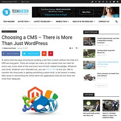 Choosing a CMS – There is More Than Just Wordpress