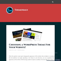 Choosing a WordPress Theme For Your Website! – ThemeMags