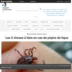 Les 5 choses à faire en cas de piqûre de tique - France 3 Bourgogne-Franche-Comté