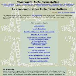Choucroute, lacto-fermentation