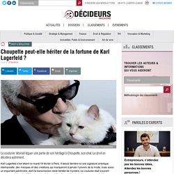Choupette peut-elle hériter de la fortune de Karl Lagerfeld ?