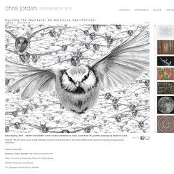 Chris Jordan - Running the Numbers
