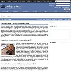 Christian Delfau : Du stop motion en ST2S