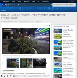 Real vs. Fake Christmas Trees: Which is Better for the Environment?