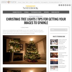 Christmas Tree Lights: Tips For Getting Your Images to Sparkle