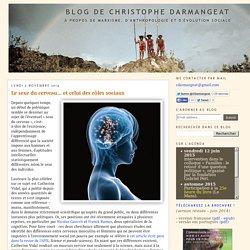 Blog de Christophe Darmangeat: Le sexe du cerveau... et celui des rôles sociaux