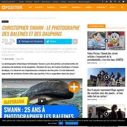 Christophe Swann, le photographe des baleines et des dauphins