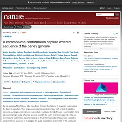 A chromosome conformation capture ordered sequence of the barley genome : Nature : Nature Research