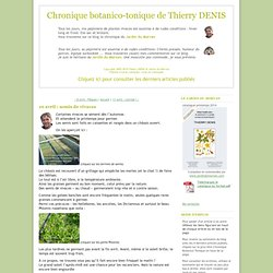 Chronique botanico-tonique de Thierry DENIS: 10 avril : semis de vivaces
