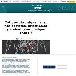 Fatigue chronique : et si nos bactéries intestinales y étaient pour quelque chose
