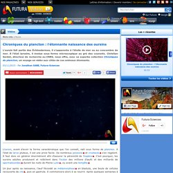 Vidéo > Chroniques du plancton : l'étonnante naissance des oursins