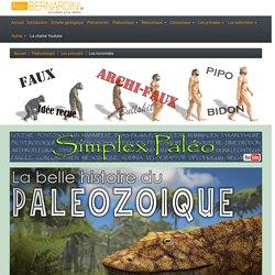 Chronologie de l'évolution de l'homme