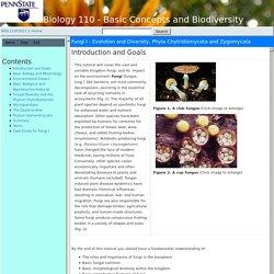Fungi I - Evolution and Diversity, Phyla Chytridiomycota and Zygomycota - BIOL110F2012 -Confluence