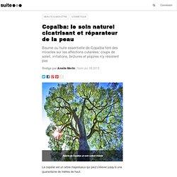 Copaïba: le soin naturel cicatrisant et réparateur de la peau