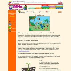 Ciencias - Naturaleza - Las plantas