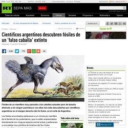 Científicos argentinos descubren fósiles de un 'falso caballo' extinto