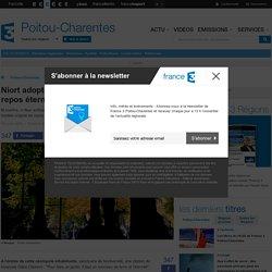 Niort adopte le cimetière naturel pour un repos éternel écolo - France 3 Poitou-Charentes