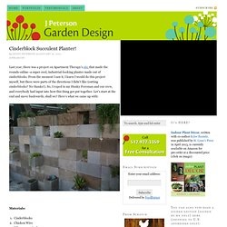 Cinderblock Succulent Planter! — J Peterson Garden Design