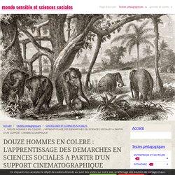 DOUZE HOMMES EN COLERE : L'APPRENTISSAGE DES DEMARCHES EN SCIENCES SOCIALES A PARTIR D'UN SUPPORT CINEMATOGRAPHIQUE