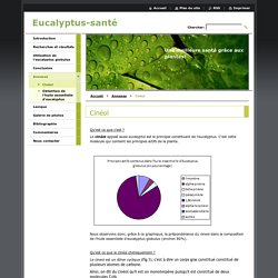 Eucalyptus-santé