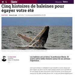 Cinq histoires de baleines pour égayer votre été