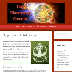 Crop Circles of Bird-beings – The Mystery School