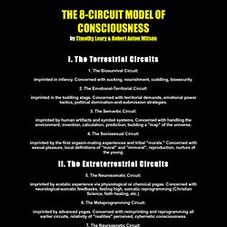 The 8-Circuit Model of Consciousness