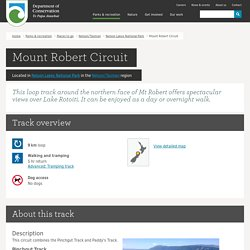 Mount Robert Circuit: Walking and tramping in Nelson Lakes National Park