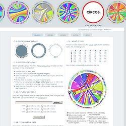 Circos Table Viewer - Circular Visualization of Tabular Data // with Circos - Circular Genome Data Visualization