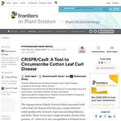 FRONTIERS IN PLANT SCIENCE 12/04/16 CRISPR/Cas9: A Tool to Circumscribe Cotton Leaf Curl Disease