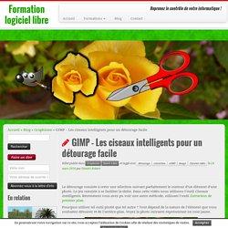 GIMP - Les ciseaux intelligents pour un détourage facile