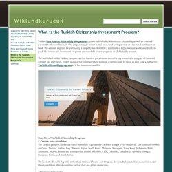 What is the Turkish Citizenship investment Program? - Wiklundkurucuk