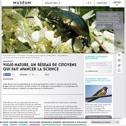 Vigie-Nature, un réseau de citoyens qui fait avancer la science