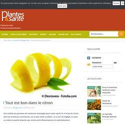 Tout est bon dans le citron - Manger sain - Plantes & santé