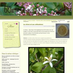 Le citron et ses utilisations - NatureLN