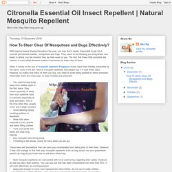 Natural Mosquito Repellent: How To Steer Clear Of Mosquitoes and Bugs Effectively?