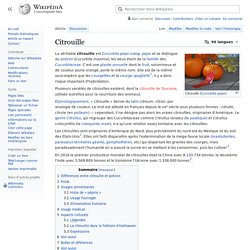 WIKIPEDIA – Citrouille.