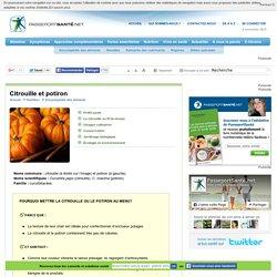 Citrouille et potiron : des légumes préférés en automne
